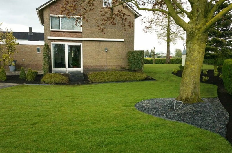 Graszoden in tuin Rosmalen
