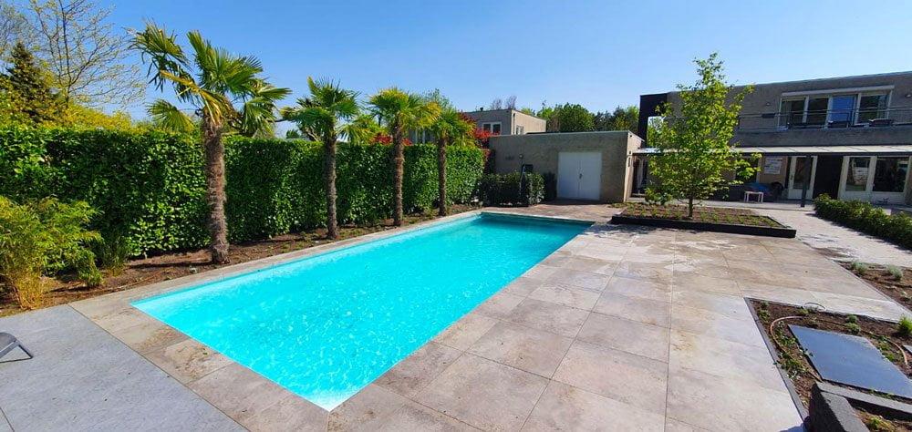 Tuinrenovatie zwembad met palmbomen