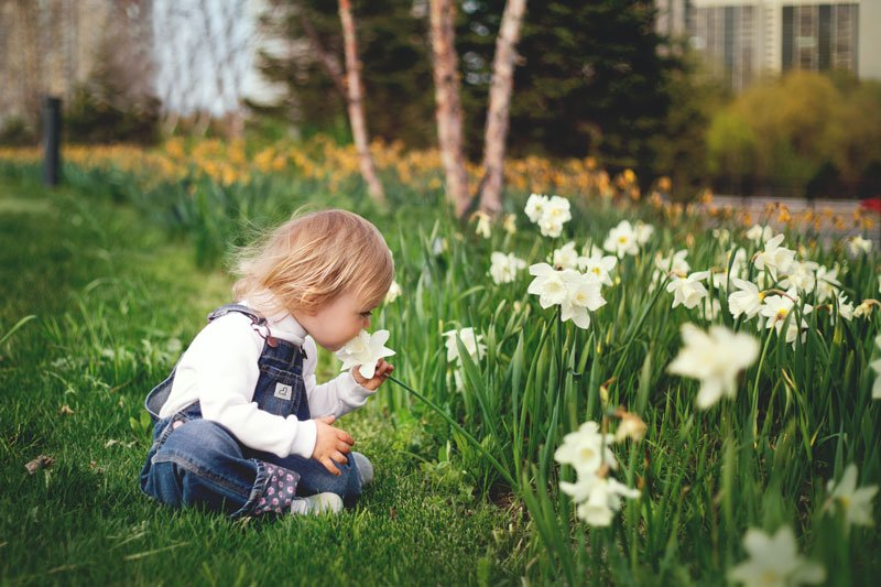 Kindvriendelijke tuin Rosmalen
